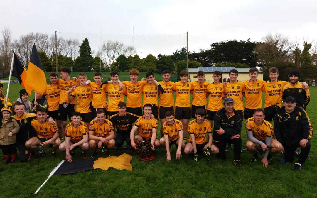 Clean sweep for Emmets Minors
